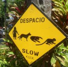 Claws Walk: 10 More Weird Animal Road Crossing Signs