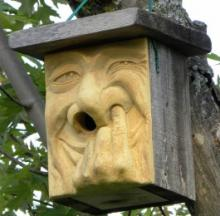 Home Tweet Home: The Top 10 Weird & Bizarre Birdhouses