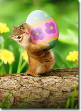 Chipmunk with Easter Egg