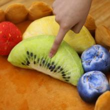 Fitlyiee Lovely Fruit Tart Pet Bed