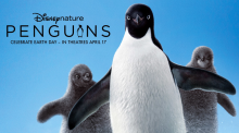 Kickstart Earth Day This Year With Disney flick About Penguins