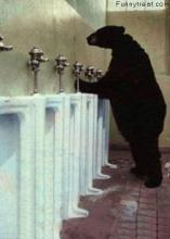 Bathroom Bear