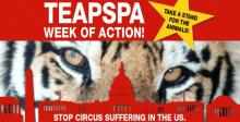 Circus Animal Performances Cancelled Until Further Notice?