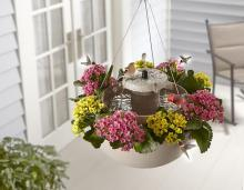 Bird Bath Hanging Planter