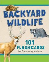 Backyard Wildlife Flashcards