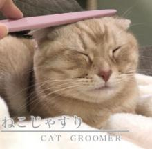 Innovative Cat Grooming Brush Looks & Licks Like A Real Cat's Tongue