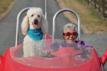 Declining Chemo, 90-year-old Hits The Road Accompanied By Her Dog
