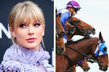 Taylor Swift Cancels Concert Amid Animal Abuse Claims