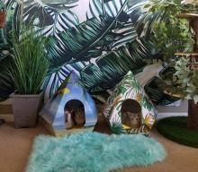 TroppiPets Hideouts For Cats