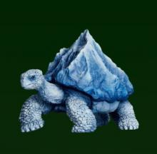 Take A Sneak 'Peak' At These Mountain Turtle Figurines