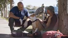 The Street Vet Treats The Homeless' Pets