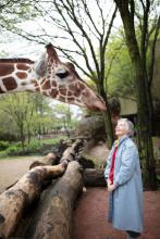 Tall Tale Of A Woman Who Stuck Her Neck Out For Giraffes