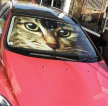 Huge Cat Face Car Sunshade Is Watching Other Drivers Motor-vate
