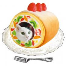 Fruit Crème Roll Cake Cat Tunnel Caters To Sweet Kitties