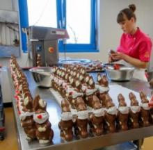 Swiss Chocolate Easter Bunnies Sport Sugary Surgical Masks