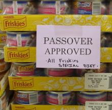'Passover Approved' Cat Food Is What Katz Crave