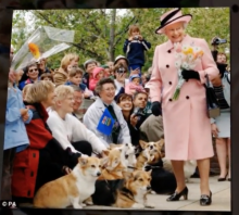 Queen Elizabeth II visits her subjects with her dogs.
