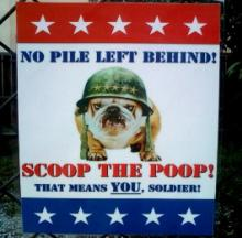 Puppy Pick-Me-Up: The Top 10 Dog Poop & Scoop Signs