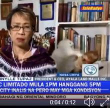 Fighting Cats' Fierce Photobomb Fails To Faze Filipina Reporter