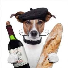 French Fido