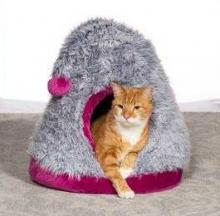 Cozy Cap Cat Cave Coddles Cat-Napping Kitties