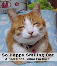 """So Happy Smiling Cat"" - A Feel-Good Feline Fur Sure!"