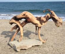 "Twisted ""Driftwood Demon"" Washes Up On Japanese Beach"