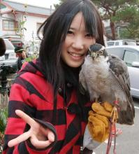 Japanese Schoolgirl is Falcon Good at Fighting Pesky Crows