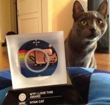 From Meme To Memory: RIP Marty, Nyan Cat's Inspiration