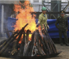 Million Dollar Vietnam Rhino And Elephant Ivory Up In Smoke