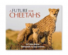 Cheetahs Racing Against Extinction