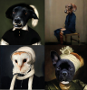 L'animophe Pet Portraits   (image via L'animophe screenshot)