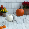 Spider Pumpkin Holder