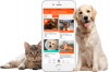 Finding Rover: Free Facial App For Lost Pets